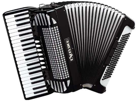 Accordion Drawing Professional accordion